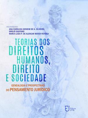Capa para Teorias dos direitos humanos, direito e sociedade: genealogia e prospectivas do pensamento jurídico